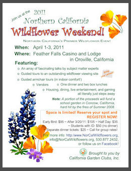 Poster for the 2014 Wildflower Weekend